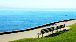 benches-by-the-sea-955665-m